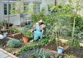 Ideal Vegetable Garden Layout Ideal Vegetable Garden Stunning Ve Able Garden Layout