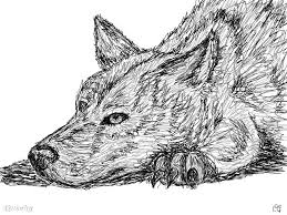 dog face an animals speedpaint drawing by dusthaven queeky