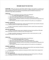 Career Overview Resume Objective Section Of Resume Resume Tip Objective Section Dorothy