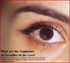 What Causes Eye Blindness Symptoms Of Parasites In Eyes