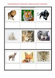 imagenes de animales carnivoros para imprimir vocabulario el blog de sami