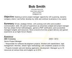 Scrum Master Sample Resume by Innovation Inspiration Career Objective On Resume 6 Sample