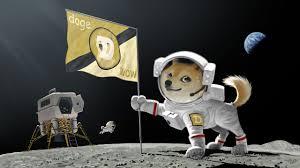 Doge Meme Wallpaper - doge dogecoin memes moon space walldevil