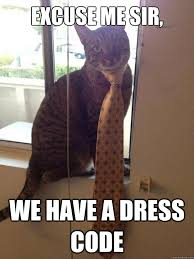 Dress Meme - 30 most funniest dress meme pictures and images of all the time
