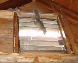 attic gable vents inspections u2014 quickinfoway interior ideas