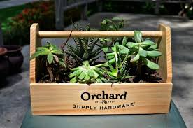 planter made from a wooden carpenter u0027s toolbox