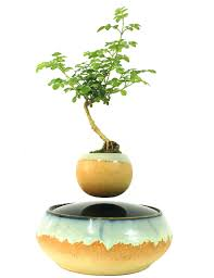 online shop 2017 levitating potted magnet plastic floating pot air