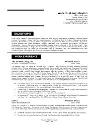 Sample Resume For Account Executive by Wl Guyton Resume 2010 With References Account Manager