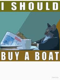 Cat Buy A Boat Meme - i should buy a boat cat meme v 1 women s fitted scoop t shirt by