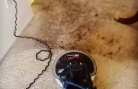 Bridgeport Carpet Al U0027s U0026 E U0027s Carpet Cleaning Bridgeport Ct 06605 Yp Com