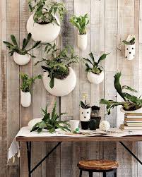 144 best hanging wall planters images on pinterest hanging