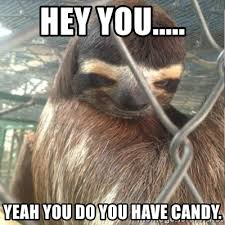 Sloth Rape Meme - hey you yeah you do you have candy creepy sloth rape