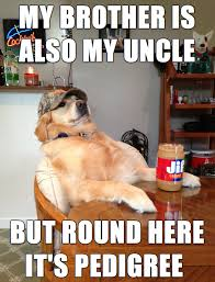 Sophisticated Cat Meme Generator - redneck retriever meme has something to say mandatory