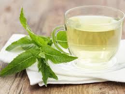 Teh Mint senang minum teh yuk kenali kepribadian berdasarkan teh favorit