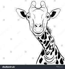 graphical image giraffe head ink sketch stock vector 631291346