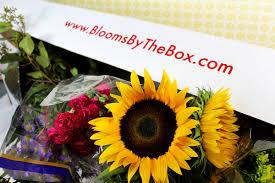 Bulk Flowers Online 28 Flowers Online Bulk Bulk Flowersfresh
