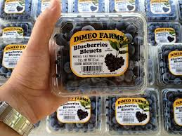 dimeo farms blueberries new jersey blueberry farm jpg