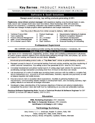 project management resume templates product manager resume sle