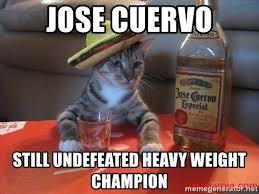 Jose Cuervo Meme - jose cuervo still undefeated heavy weight chion gato tequila