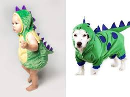 Dinosaur Halloween Costume Babies Dogs Matching Halloween Costumes Baby