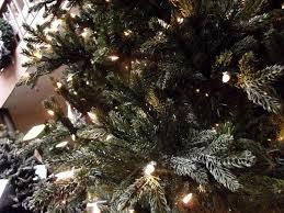 mini fir tree legrue s gallery denver co 80209