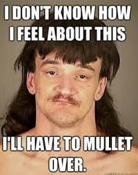 How I Feel Meme - i don t know how i feel about this i ll have to mullet mullet memes