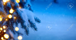 tree light blue snow background stock photo picture