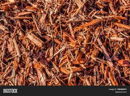 Landscaping Wood Chips by Wood Chips Mulch Beauty Bark Natures Textured Mulch For Outdoor