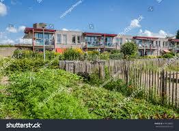 urban agriculture vegetable garden beside apartment stock photo