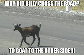 Billy Goat Meme - why did billy cross the road imgflip