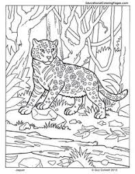 boy and color page coloring pages to print for boys and