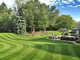 Landscape Management Services by Lawn Maintenance And Turf Care Landscaping Atlanta