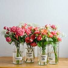 The Best Way To Put the best way to extend the life of flowers long sides flower