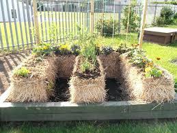 small kitchen garden ideas small vegetable garden design ideas ghanadverts club
