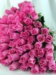 Picture Of Roses Flowers - 945 best roses images on pinterest flowers pretty flowers and