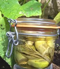 journal des femmes cuisines cornichons maison au vinaigre pickled gherkins recipe