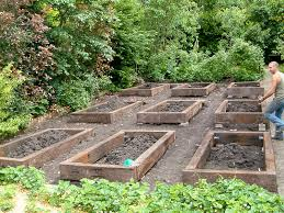 Kitchen Garden Designs Vegetable Garden Gallery Olive Garden Design And Landscaping