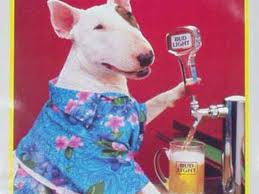 bud light commercial 2017 who is bud light dog spuds mackenzie business insider