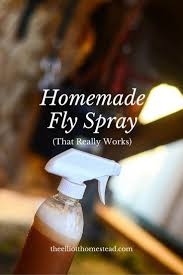Homemade Fly Trap by Homemade Fly Spray That Really Works Homemade Fly Spray Fly