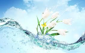 Water Wallpapers Hd Desktop Wallpapers Amazing Water Wallpaper Hd Wallpaper Wiki
