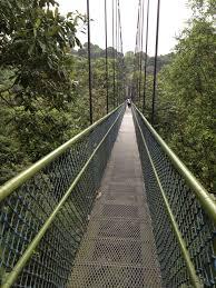 Pain Climbing Stairs by Walking Up Stairs Hurts Back U2013 Shawn Karam