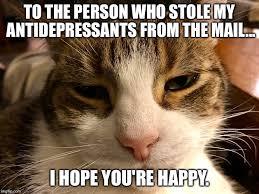 antidepressant imgflip