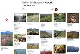 best 25 california native landscape califia blog