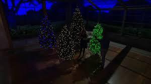 santa u0027s best balsam fir christmas tree with rgb 2 0 technology on