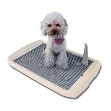 bagno per cani letteria per cani quale la migliore pet magazine