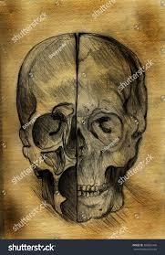 skull halloween background old burnt paper skull pencil drawing stock illustration 309681446