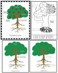 label parts of a tree parts tree pinterest trees