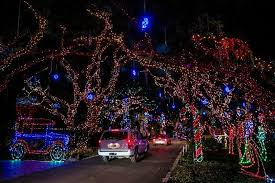 Light Show Lights Snug Harbor Holiday Light Show Goes Dark