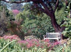 Ucr Botanical Gardens Botanic Gardens Get Involved