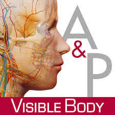 App For Anatomy And Physiology Visible Body For Ipad 2 3d Human Anatomy Atlas Iphone Medical